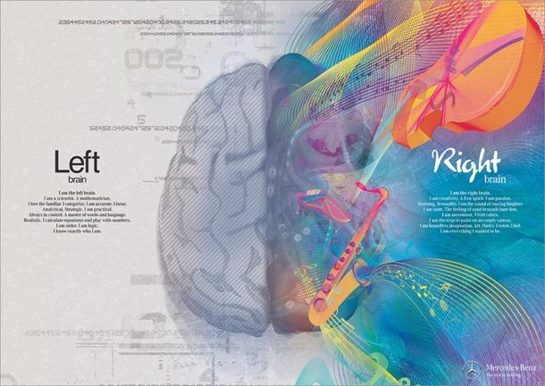 Cérebro 1